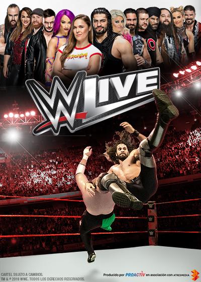 WWE 18
